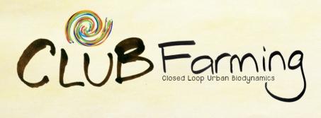 CF FB banner